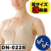 DN-0228_pcsn.png